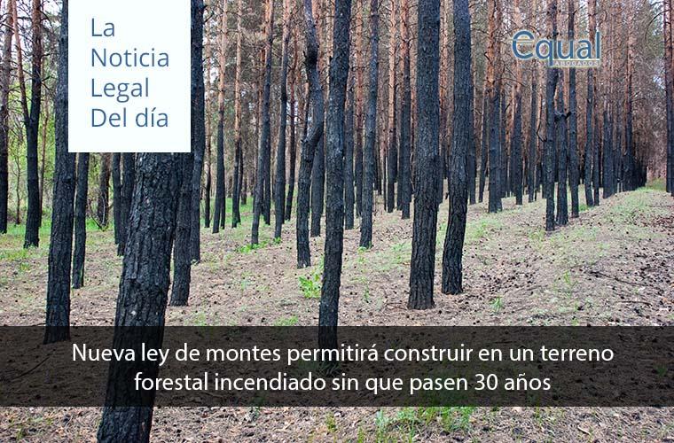 Nueva ley de montes permitirá construir en un terreno forestal incendiado sin que pasen 30 años